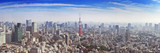 Fototapety Skyline of Tokyo, Japan with the Tokyo Tower, from above