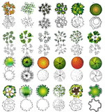 A set of treetop symbols, for architectural or landscape design