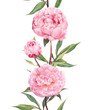 Peony pink flowers. Seamless floral border stripe. Watercolour - 96896209