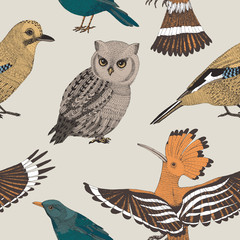 vector hand drawn seamless pattern with wild birds