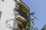 Fototapety traditional Andalusian streets with flowers and white houses in