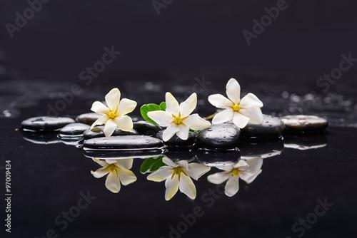 Obraz na Szkle Still life with three gardenia on black pebbles