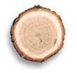 Wood. - 97047683