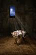 Obrazy na płótnie, fototapety, zdjęcia, fotoobrazy drukowane : Jesus on the Manger