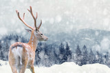Fototapety Deer on winter background