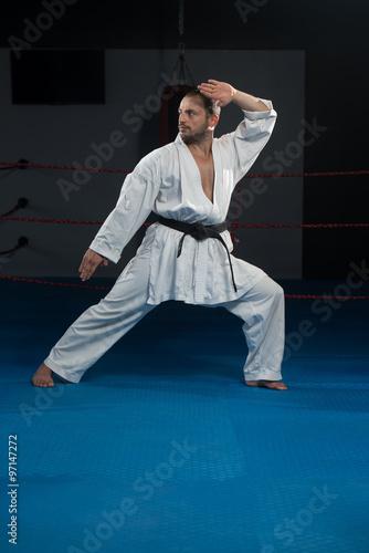 Fototapeta Taekwondo Fighter Pose