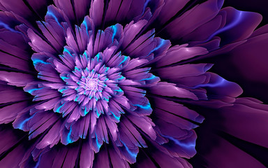 Abstract fractal background, glossy violet-cyan flower