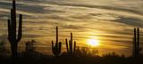 Arizona desert lands...