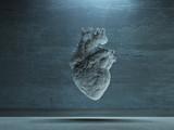 Human Heart - 97422483