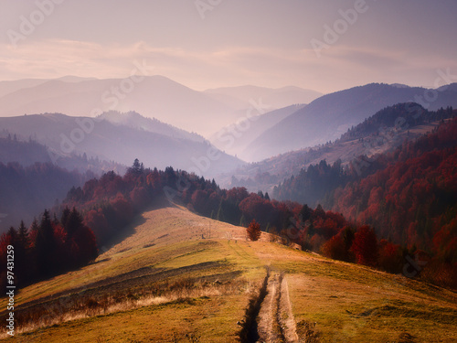 Carpathians nature - 97431259