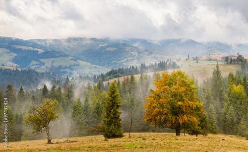 Carpathians nature - 97432424