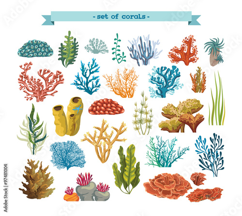 Set of colorful corals and algae.