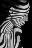 The face of woman with black and white zebra stripes