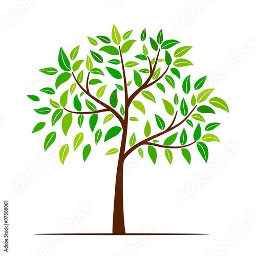 Naklejka green tree with leaves