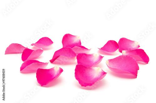 Zdjęcia na płótnie, fototapety, obrazy : Petals of roses on a white background