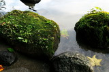 洞爺湖 苔のある岸辺