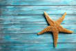 Starfish on a blue wooden table