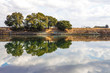 River reflections, water in the Sacramento Delta