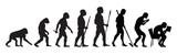 Human Evolution - 97703043
