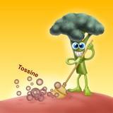 verdure disintossicani