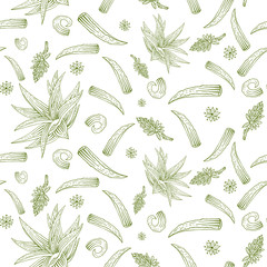 Vector herb pattern with aloe vera, flowers and branches.