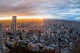 Fototapety 東京新宿からの風景 Building group of shinjuku, Tokyo, Japan