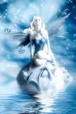 Elf fairy