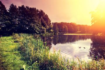 Sunset over lake. © Anioł