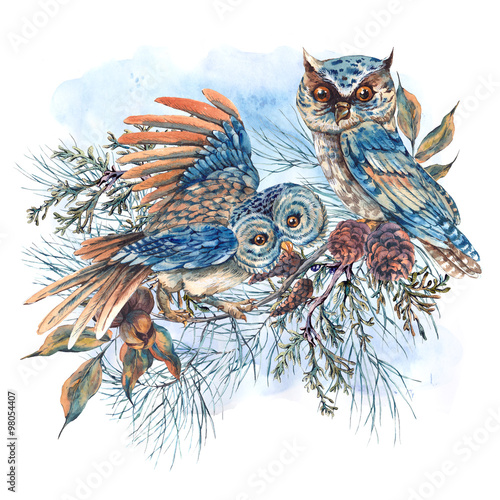 Watercolor greeting card with owls, spruce branches and fir cone - 98054407