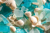 Fototapety Turquoise sea glass and cockle shells; glass worn smooth by ocean waves