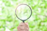虫眼鏡,検索
