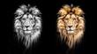 Leinwandbild Motiv Portrait of a Beautiful lion, lion in the dark, oil paints