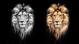Portrait of a Beautiful lion, lion in the dark, oil paints - 98194214