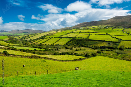 Keuken foto achterwand Nieuw Zeeland Landschaft mit Weiden in Irland