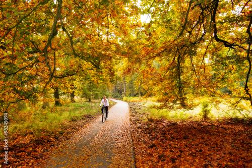 Keuken foto achterwand Bossen Cycling trough the woods in national park 'De hoge veluwe' in the Netherlands in autumn