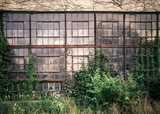 Grungy old industrial exterior with windows and overgrown vines and weeds