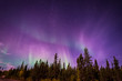The amazing night skies over Yellowknife, Northwest Territories of Canada putting on an aurora borealis show.