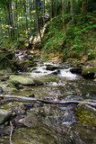 strumień górski