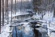Rzeka Łutownia w Puszczy Białowieskiej zimą
