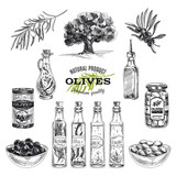 Fototapety Vector hand drawn illustration with olives and olive oil.