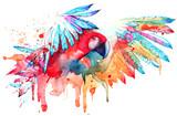 parrot - 98453842