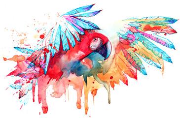 parrot © okalinichenko