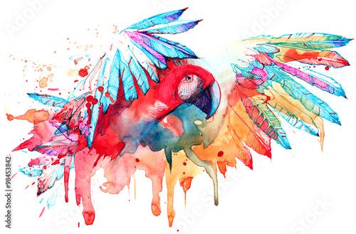 Spoed canvasdoek 2cm dik Schilderingen parrot