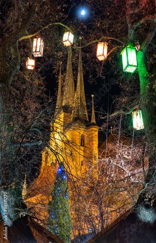 Poster Baumbeleuchtung am Domplatz Erfurt