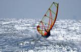 windsurfer Nordsee - 98566084