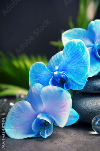 Fototapeta na wymiar Beautiful spa composition with blue orchid and stones