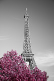 infrared photography Eiffel Tower - 98588280
