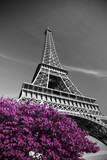 infrared photography Eiffel Tower - 98588284