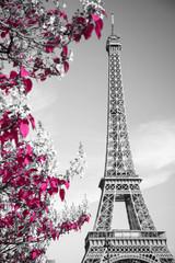 podczerwień fotografii Wieża Eiffla