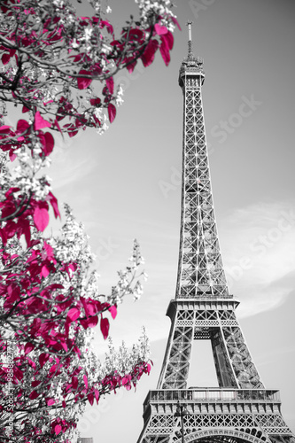 Fototapeta infrared photography Eiffel Tower
